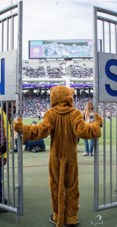 The Lion Troop is lending a paw to the Nittany Lion by documenting the mascot's life.