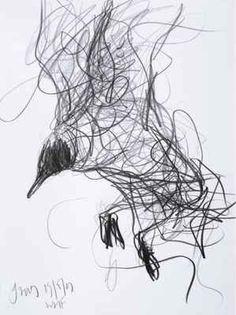 Black-Headed Gull Hanging on the Wing: Jason Gathorne, graphite on paper