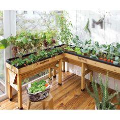 Great idea for a three season porch. Raised Planter Beds, Raised Garden Beds, Raised Beds, Raised Vegetable Gardens, Vegetable Garden Design, Terrace Garden, Indoor Garden, Garden Lanterns, Autumn Garden