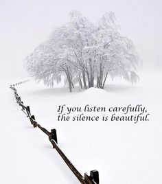 snow muffled nature into silence Snow Quotes, Winter Quotes, Me Quotes, Quotes About Snow, Quotes About Winter, Snow Sayings, Peace Quotes, Great Quotes, Quotes To Live By
