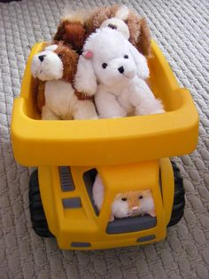 Four Lil'Kinz and a Mazin Hamster in a dump truck! :) The poodle is named Suzie, The basset hound is Sherlock, The horse is Cleo, the cocker spaniel is Cinnamon and the hamster is Honey.