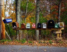 Fall is here !!! #autumn #leaf #color #what_i_saw_in_nyc #nyphotographer #fallcolors #travelphotographer #wanderlust #newyork_instagram #traveller #stockphoto #travel #yellow #iloveny #abc7ny #autumn #ny #travelphotography #sonyalpha #justgoshoot #beautiful #exploreeverything #countryside #beauty #motherearth #likeforlike #woodstock #upstate #danmleephotography @abc7ny #alphaculture