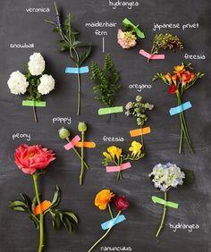 Floral Laboratory (via Naked Bouquet). Types Of Flowers, My Flower, Beautiful Flowers, Arte Floral, Floral Arrangements, Flower Arrangement, Planting Flowers, Wedding Flowers, Bouquet Wedding