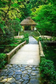 Hônen-in temple, Kyôto (@japanimpression)   Twitter