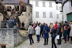 CHECK UP PER IL GELSO DI 600 ANNI di Ponte in Valtellina ... nei prossimi giorni pubblicheremo i RISULTATI fotografia di Fabrizio Garlaschelli che ringraziamo