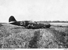 A downed USAAF P-40E, battle of Darwin.