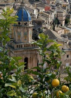"""Ragusa Itália / The ancient city, located on a 300 m high hill. In 1693 the city was devastated by a huge earthquake, which killed some 5,000 inhabitants after this catastrophe the city was largely rebuilt, many baroque buildings date from this period. Today the two cities of Ragusa Superiore and Ilba are connected by three hundred zig-zagging steps."""""""