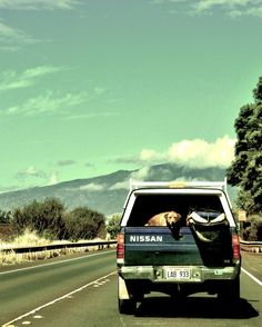 road trip through the mountains