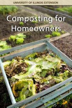 Consider reducing your garbage output through composting. Here's everything you need to get started.