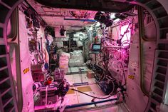 Light from Veggie experiment bathes @Space_Station's interior. @ISS_Research weekly recap: http://go.nasa.gov/1us4GM1