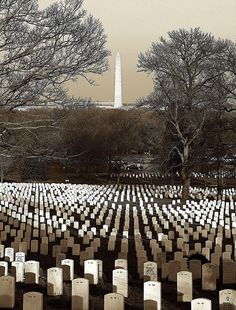 Arlington National Cemetery- America's most sacred ground. Poignant evidence that freedom isn't free.