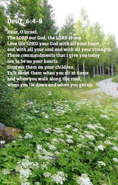 Deuteronomy 6:4-8 4 Oye, Israel: Jehová nuestro Dios, Jehová uno es.  5 Y amarás a Jehová tu Dios de todo tu corazón, y de toda tu alma, y con todas tus fuerzas.  6 Y estas palabras que yo te mando hoy, estarán sobre tu corazón;  7 y las repetirás a tus hijos, y hablarás de ellas estando en tu casa, y andando por el camino, y al acostarte, y cuando te levantes.  8 Y las atarás como una señal en tu mano, y estarán como frontales entre tus ojos;