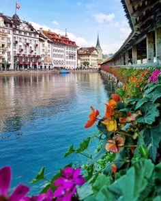 The famous Chapel bridge of Luzern... . #suisse #schweiz #switzerland #lucerne #lumix #vision