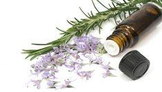 Los aceites vegetales son una alternativa simple y eficaz de aprovechar las propiedades de las plantas medicinales y aromáticas. Mediante los oleatos podemos ob