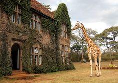 Giraffe Manor- Nairobi, Africa