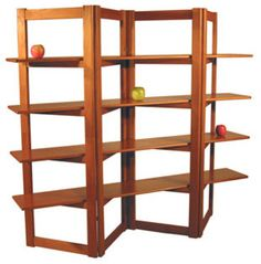 Google Image Result for http://st.houzz.com/simages/442790_0_3-1252-modern-bookcases-cabinets-and-computer-armoires.jpg