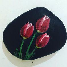 #tulips #renkler
