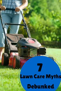 There are a lot of lawn and garden hacks on Pinterest but not all of them work. Have you heard of using chewing gum to repel moles? What really causes thatch? We have the answers and debunked 7 big myths.