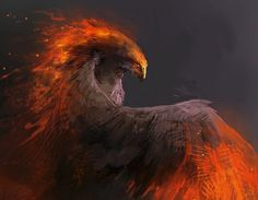 Fire bird by Nigreda