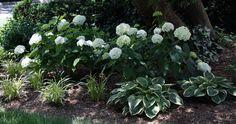 Flower Gardens - Legarden Designs