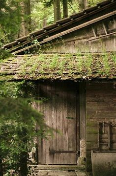 Woodland Cottage: The House of a hobbit by FVDB photogeaphy Little Cabin, Little Houses, Cabins And Cottages, Log Cabins, Tiny Cabins, Cozy Cabin, Jolie Photo, Cabins In The Woods, Wabi Sabi