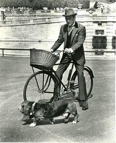 Rex Harrison rides a bike. Basset hound gallops alongside.