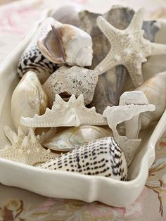 For my spring/summer bed and bath theme!  Seashells become attractive accents that fill a vintage dish and sit on ledges