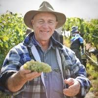 Southern Australia's Popular Wine-Tasting Day Trips From Adelaide