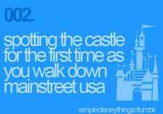 I LOVE IT!!! Nothing like walking down Mainstreet USA and seeing the castle!!! Makes me wanna cry everytime!