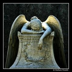 This is probably what my guardian angel looks like most of the time