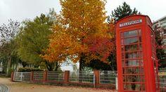#Herbst in #Crivitz.  #Herbst2015 #buntebäume #bäume #drwho #telefonzelle #drwhotelefonzelle