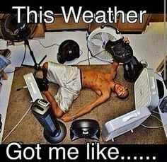FunSubstance - Funny pics, memes and trending stories Hot Weather Humor, Weather Quotes, Funny Weather, Weather Memes, Funny Shit, The Funny, Funny Jokes, Hilarious, Funny Stuff