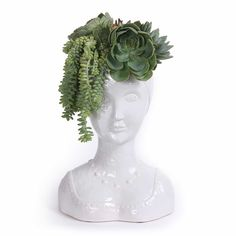 Succulent Male and Female Bust – FLORAL ART