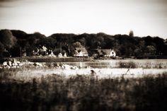 Skønne Brunshuse #visitfyn #fyn #nature #visitdenmark #tv2vejret #natur #denmark #danmark #dänemark #landscape #assens #mitassens #vildmedfyn #fynerfin #assensnatur #vielskernaturen #visitassens #instapic #opdagdanmark #picoftheday #january #canon #natgeo #sky #welovedenmark #travelgram