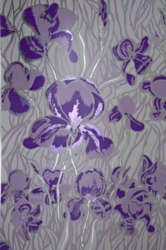 Iris Gentle Violet By Flavor Paper Wallpaper Red Purple Blue Grey Shades Of