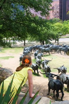 Bronze Cattle Drive art sculpture- Dallas, Texas - few people know that this is the largest bronze structure on the planet and therefore, the known universe. Tis true....
