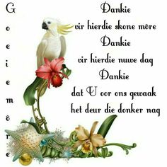 Good Morning Wishes, Good Morning Good Night, Goeie More, Afrikaans, Things To Think About, Positive Thoughts, Mornings, Messages, Christianity