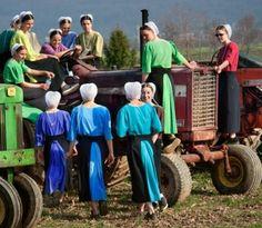 Amish...