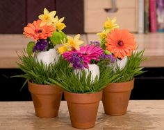 Easter Gerberas in Eggs
