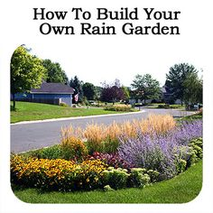 How To Build Your Own Rain Garden