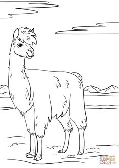 Llama coloring page from Llama category. Select from 31983 printable crafts of cartoons, nature, animals, Bible and many more. Free Adult Coloring Pages, Coloring Pages To Print, Free Printable Coloring Pages, Coloring Books, Colouring, Printable Crafts, Printables, Llama Pictures, Llama Arts