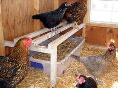 Chicken Coop Hacks