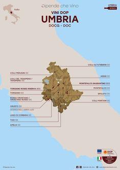 Tutti i vini DOP (DOCG e DOC) dell'Umbria, localizzati sulla carta regionale.   Al link le informazioni sulle tipologie e sugli uvaggi.  Italian Wine Region Umbria. Grape Plant, Wine Chart, Wine News, Wine Guide, Restaurant Concept, Italy Map, Wine Cheese, Italian Wine, Fine Wine