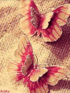 GIFS HERMOSOS: FLRES Y MARIPOSAS ENCONTRADAS EN LA WEB Cellphone Wallpaper, Mobile Wallpaper, Beautiful Butterflies, Beautiful Flowers, Heart Gif, Butterfly Wallpaper, Animation, Abstract, Plants