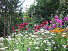 Mooiste foto's van tuinen - foto's van de week