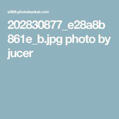 202830877_e28a8b861e_b.jpg photo by jucer