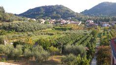 La valle di Galzignano vista dall'alto