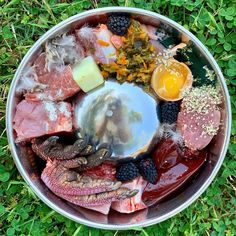 Dog Raw Diet, Raw Food Diet, Pet Nutrition, Animal Nutrition, Dog Recipes, Raw Food Recipes, Healthy Recipes, Raw Feeding For Dogs, Raw Pet Food