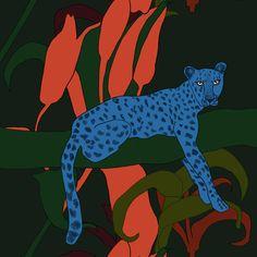 Sininen Gepardi kangas, sininen