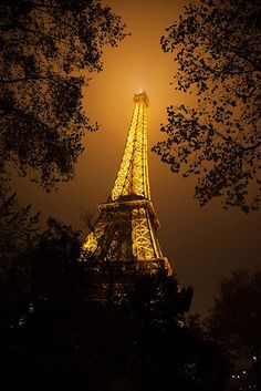 Eiffel Tower at Night | Flickr - Photo Sharing!